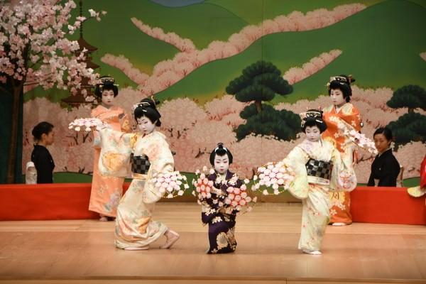 日本舞踊 元禄花見踊